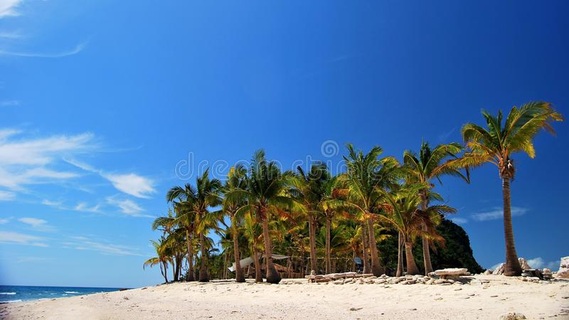 White sand beach stock photography