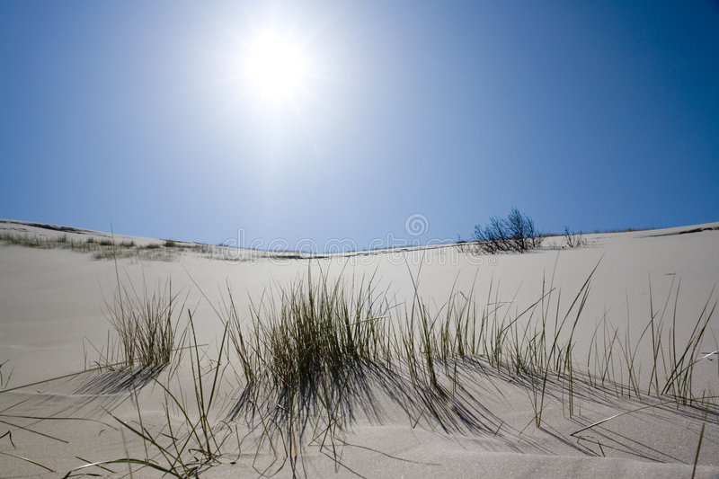 White Sand and Sun royalty free stock image