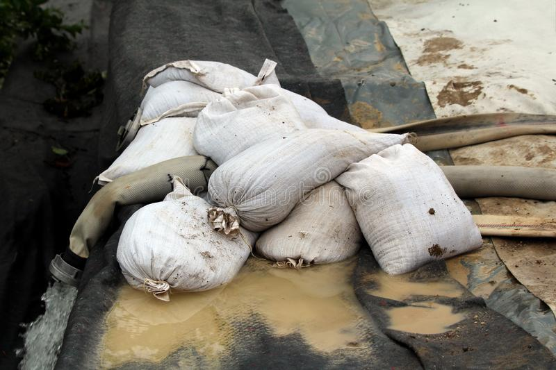 White sandbags on top of large diameter fire hose used to pump flood water away from family houses over temporary flood protection. Wall on rainy spring day stock photography