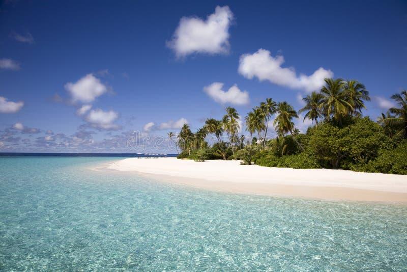 White sandy beach stock photography