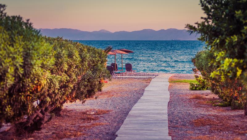 White sandy path between bushes and palm trees leading to beach. Greece, Rhodes stock photos