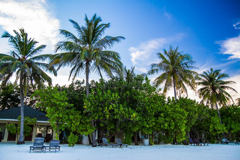 White sandy tropical beach in Maldives stock photo