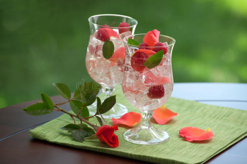 Download White Sangria stock photo. Image of alcoholic, rose, cocktail - 25220004