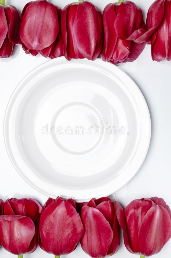White saucer stands on a white background next to multi-colored tulips stock image