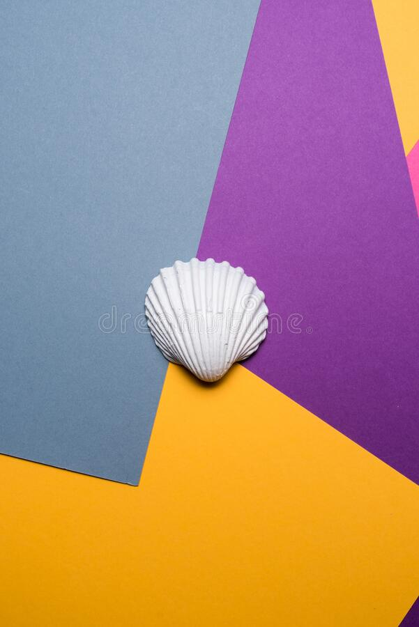 White sea shell on a colorful abstract background, Summer time concept stock photo