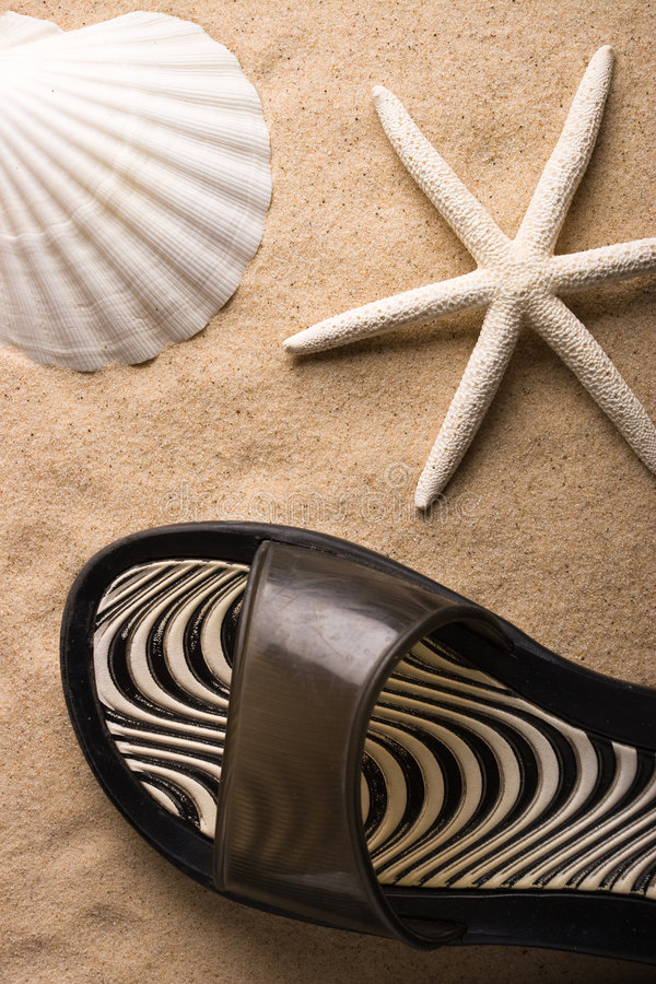 White sea star. A white sea star, a shell and a sand shoe royalty free stock image