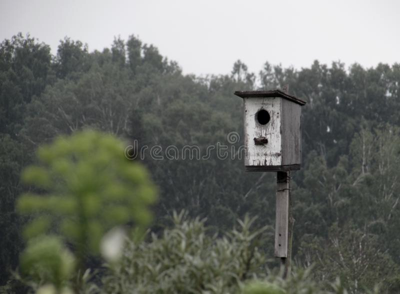 White shabby old birdhouse for birds against the background of distant dark green forest trees stock photos
