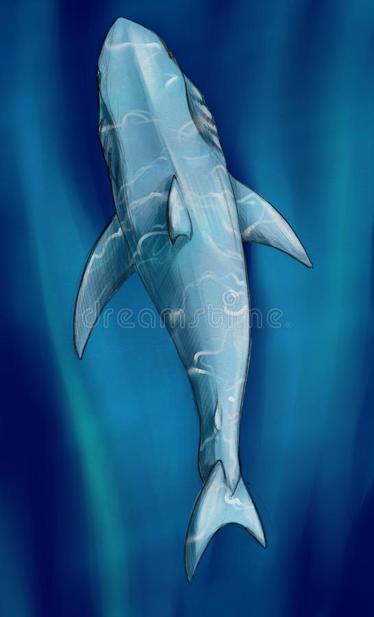 Download White shark underwater stock illustration. Image of deep - 42165738