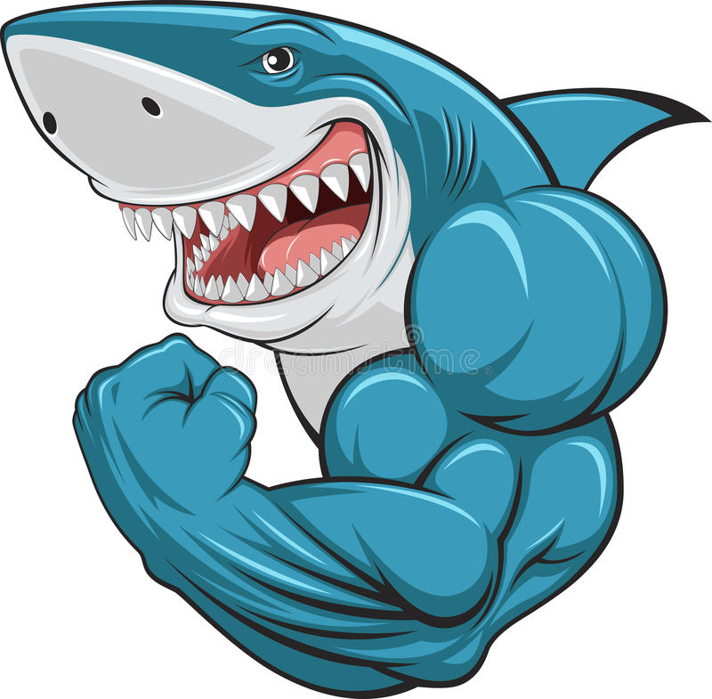 White shark. Vector illustration, toothy white shark royalty free illustration