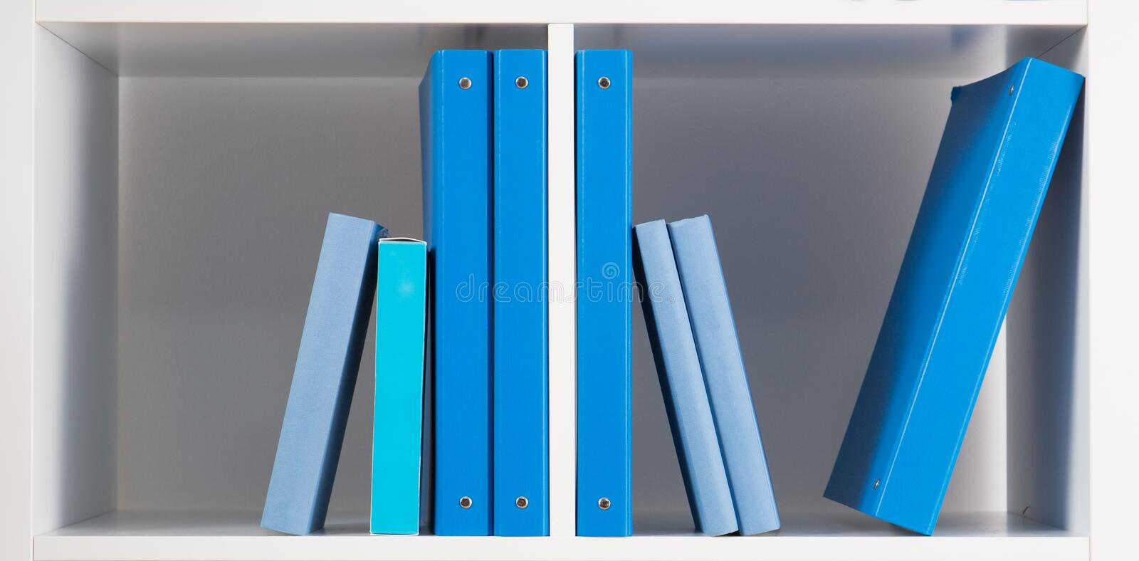 Blue Covered Book : White shelf with books stock photo image