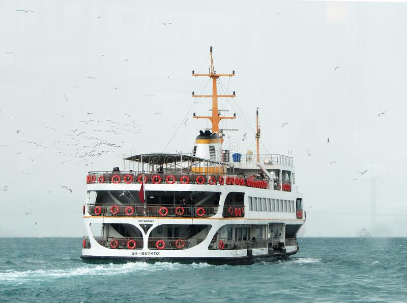 White Ship Traveling Through Vast Body of Water With White Birds Flying Beside stock photo