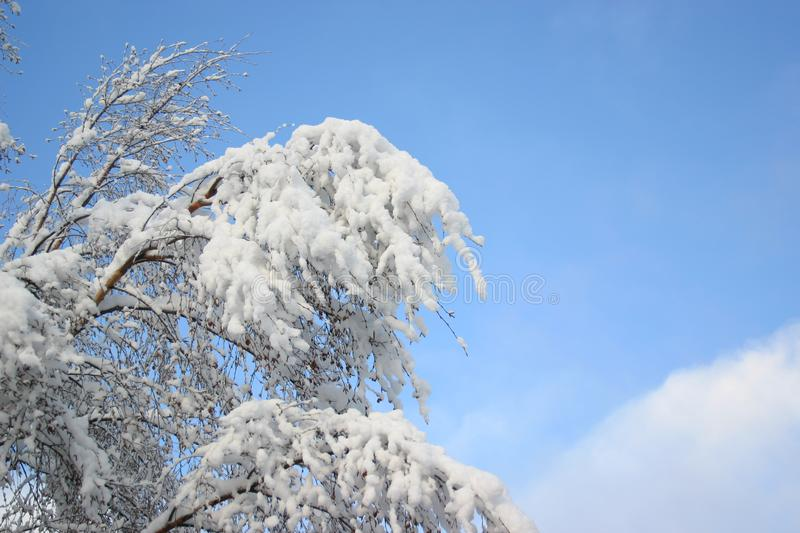 White snow and blue sky stock images