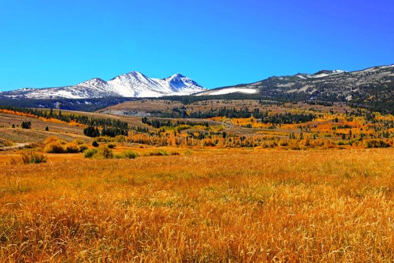White Snow Mountain Near Grass Field stock image