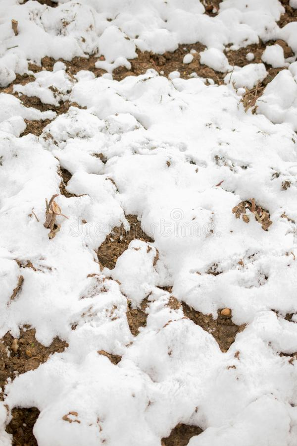 White snow on rocky and muddy surface. On display royalty free stock photo
