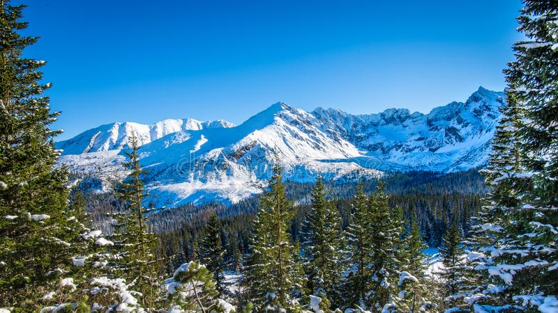 Snowy peaks in Tatra mountains winter, Poland. White snowy and frosted peaks in Tatra mountains winter, Poland stock photography