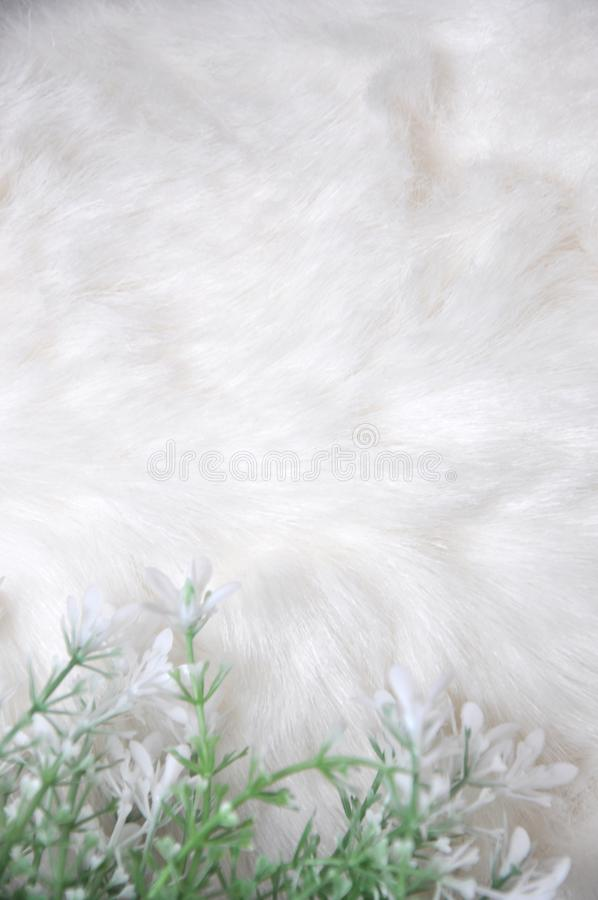 White Soft and Puffy Background Decorated with Flower. White soft and puffy fabric background decorated with white artificial flower royalty free stock photos