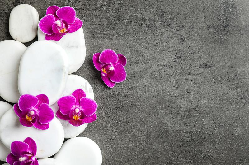 White spa stones and orchid flowers on grey background. Space for text royalty free stock photography