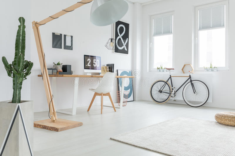 White spacious studio. With wooden decoration, cactus and bicycle stock images