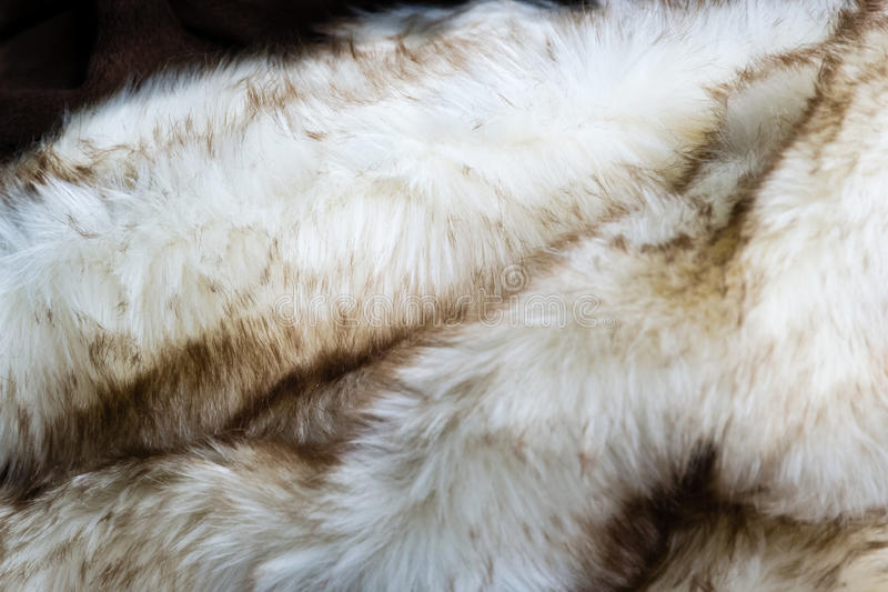 White speckled fur. White shaggy fur as a background for luxury stock photos