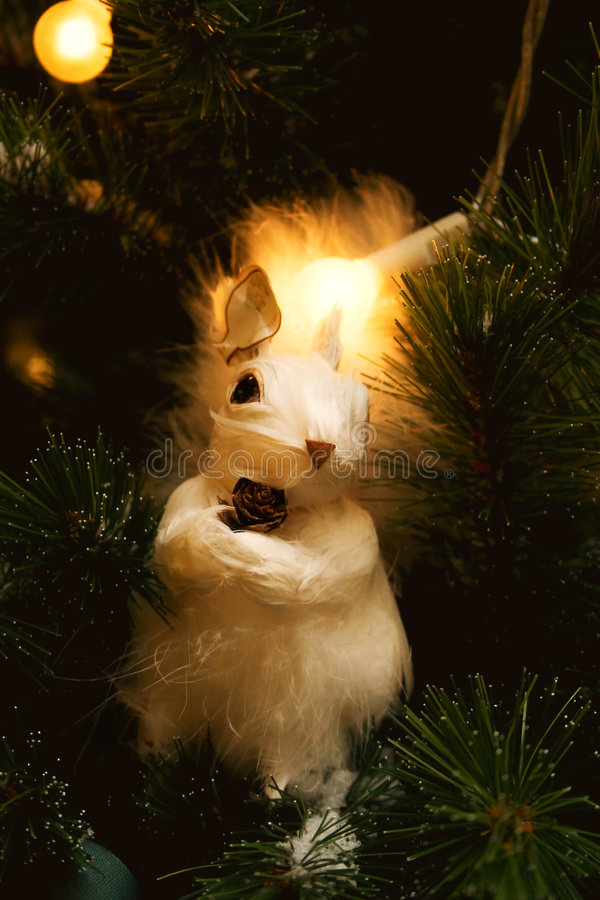 White Squirrel In Fur-tree Branches Royalty Free Stock Photo