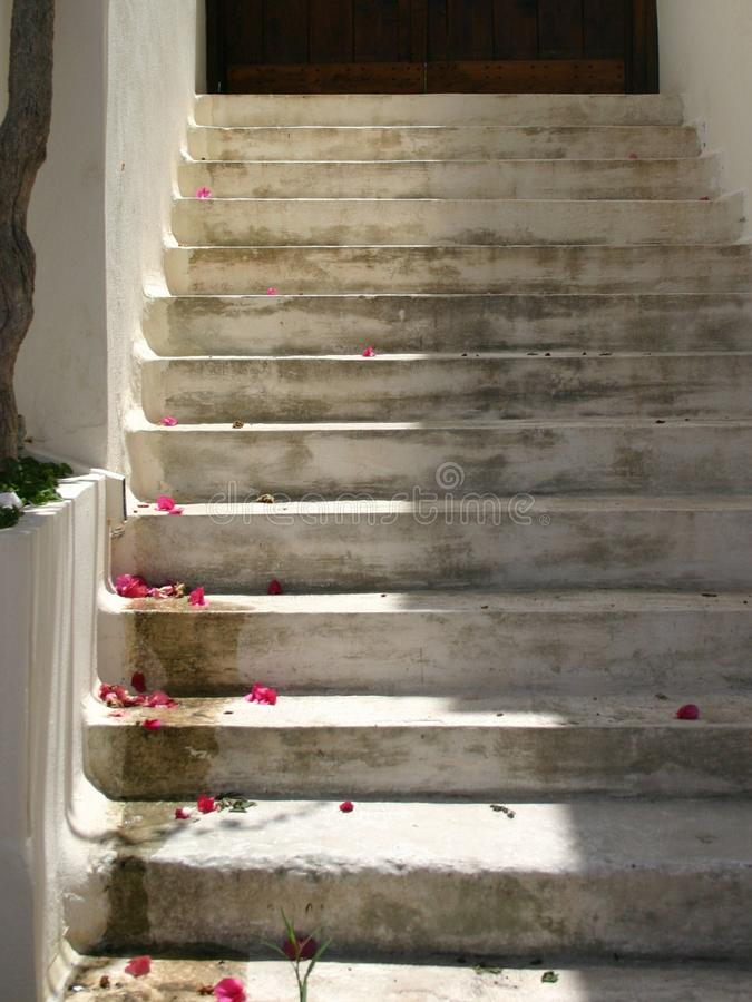 White stairs leading up with sunshine and red petals stock image