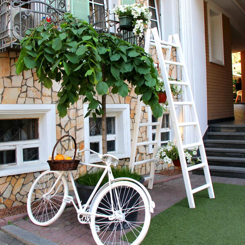 White Step Through Bicycle Leaning Beside Tree Plant Free Public Domain Cc0 Image