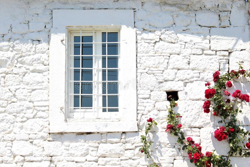 White stone walls and red roses from Pergamon, Turkey. White stone walls red roses pergamon turkey antique history  historical place visit house home interior royalty free stock images