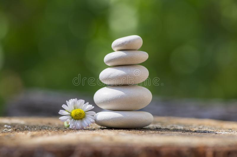 White stones cairn, poise light pebbles on wooden stump in front of green natural background, zen like, harmony and balance stock photo