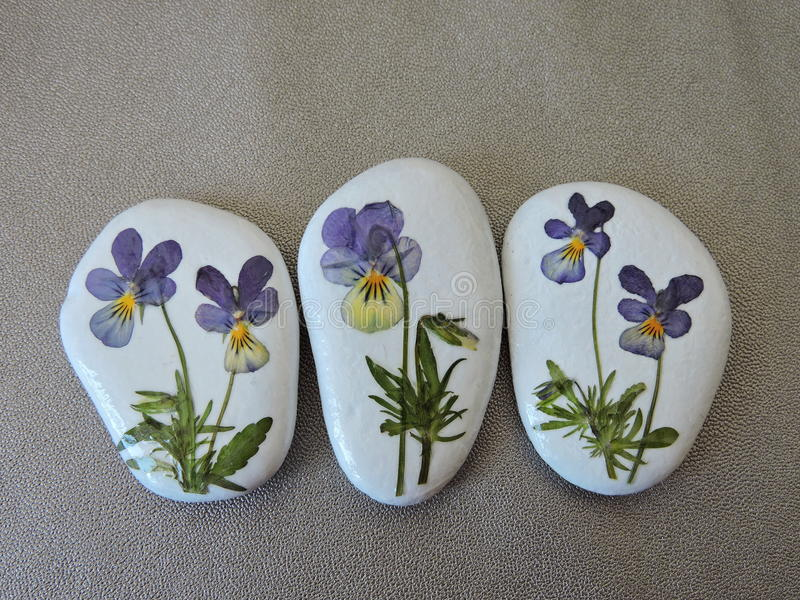 White stones with pansy flowers royalty free illustration