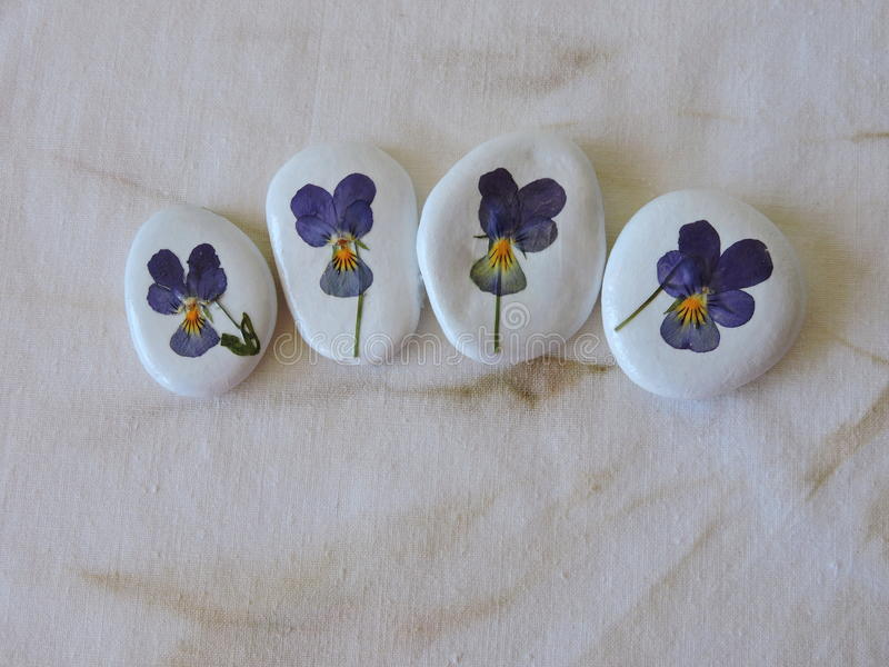 White stones with pansy flowers stock illustration