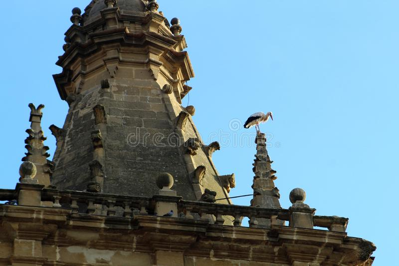 Stork in church of the sixteenth century in Briñas. Spain. A white stork perched on the pinnacle of the church tower of Nuestra Señora de la Asunción stock photos