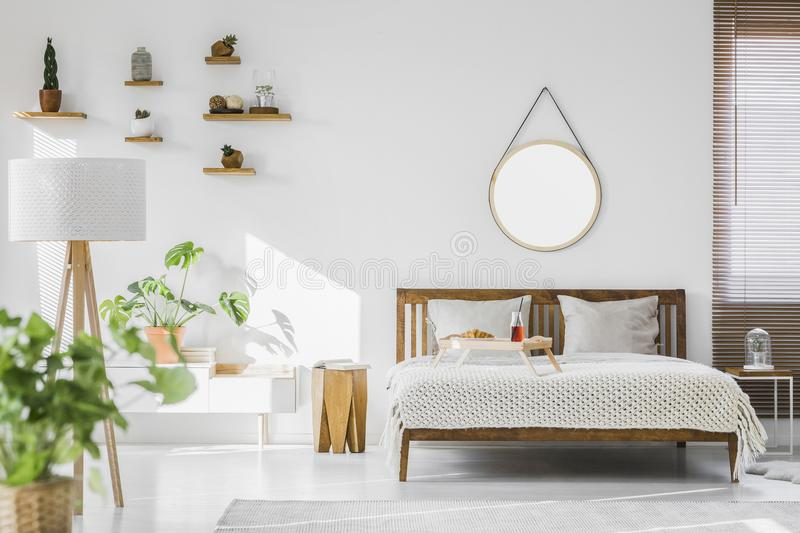 A white, sunlit hotel bedroom interior with monstera deliciosa p. Lant, cacti on shelves and a round mirror above a rustic, wooden double bed royalty free stock photography