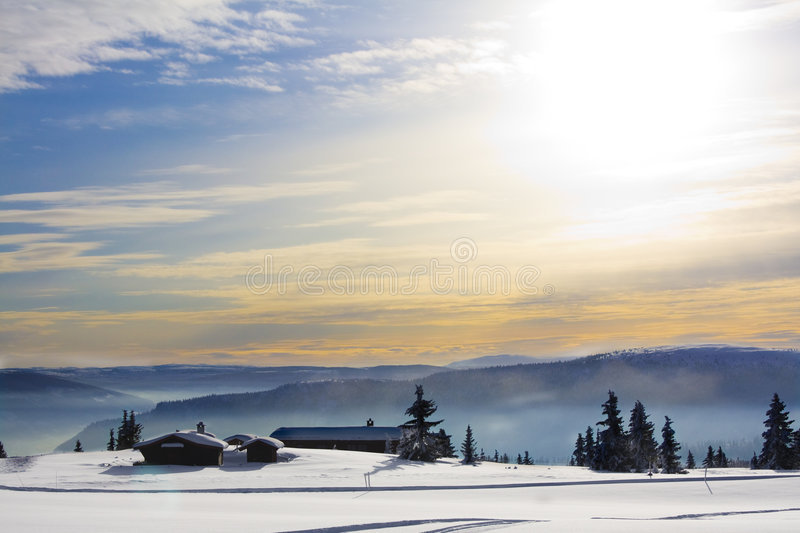 Download White and sunny Christmas stock photo. Image of norway - 8270932
