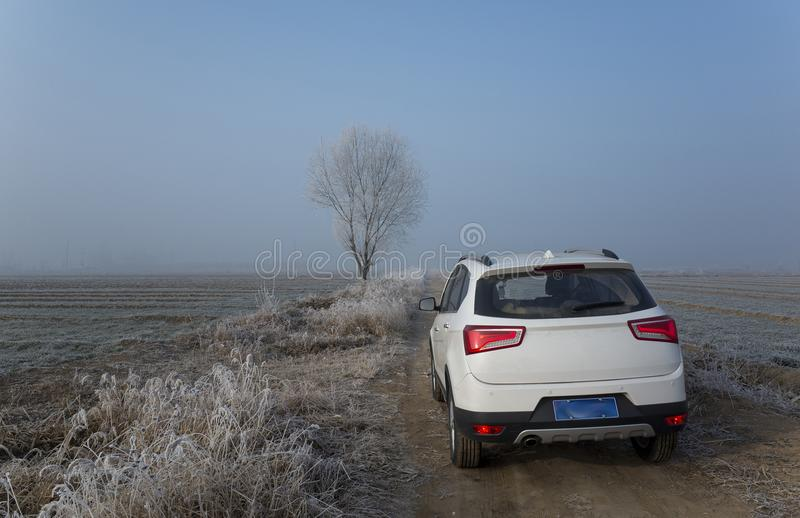 White SUV in the country road. The white SUV parked in the farmland road in winter royalty free stock image