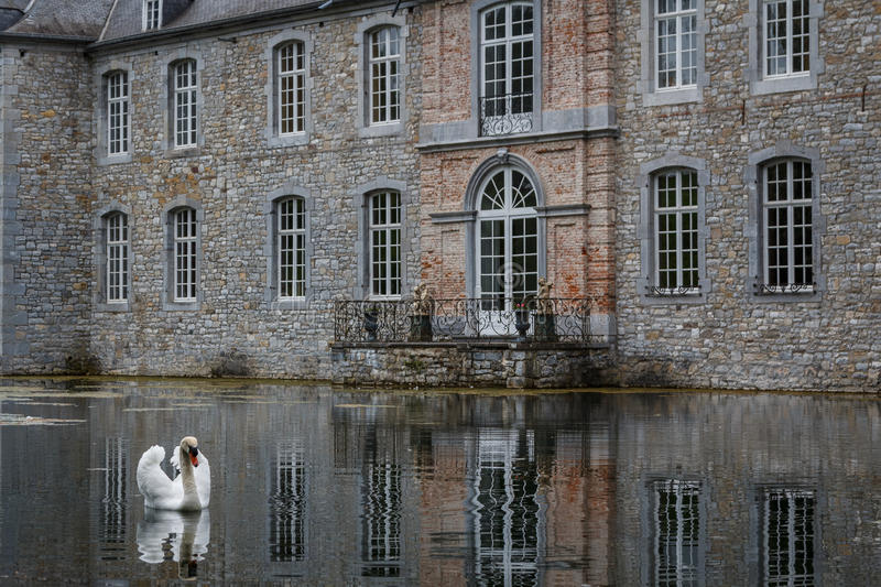 White swan in front of Annevoie castle stock photo