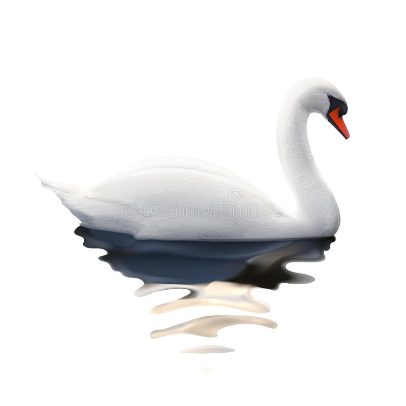Free White Swan Vector Illustration Royalty Free Stock Image - 57001796