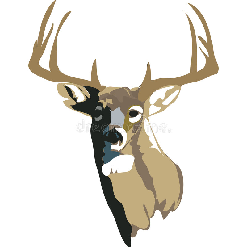 White Tailed Deer with clipping path. Illustration with clipping path royalty free illustration