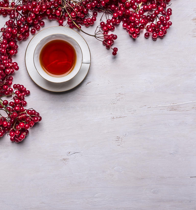 Download White Tea Cup On A Saucer Bunches Of Berries Viburnum On Rustic Wooden Background Top View Space For Text Stock Image - Image of space, food: 61011863