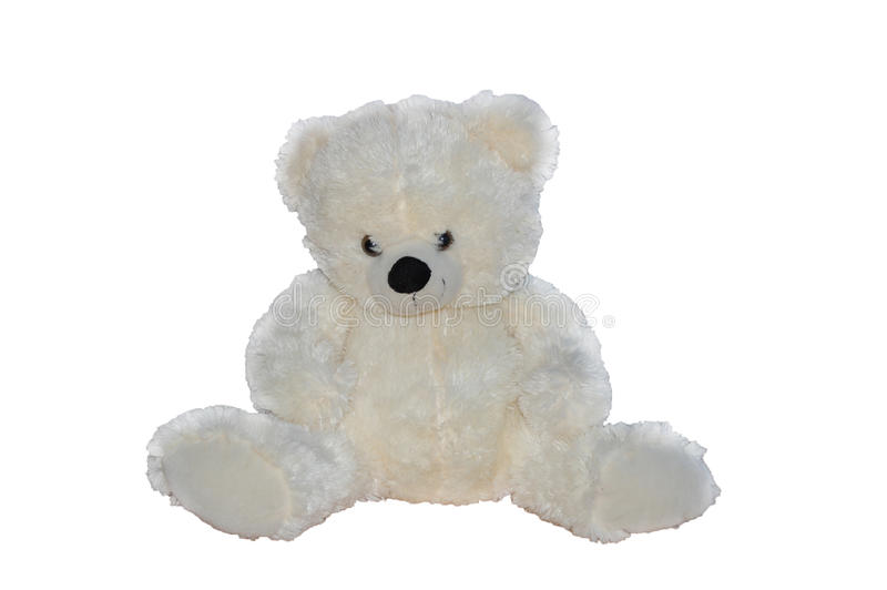 White Teddy Bear stock image