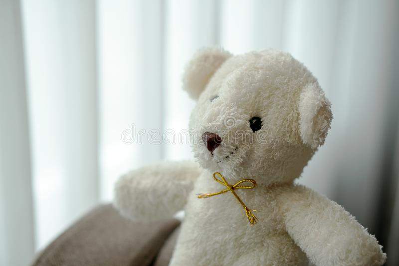 White teddy bear doll toy sit on a sofa couch. White teddy bear doll toy sit on the sofa couch royalty free stock photos