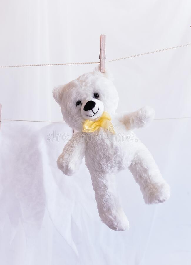 Teddy bear hanging on a clothesline. White teddy bear hanging on a clothesline royalty free stock photography