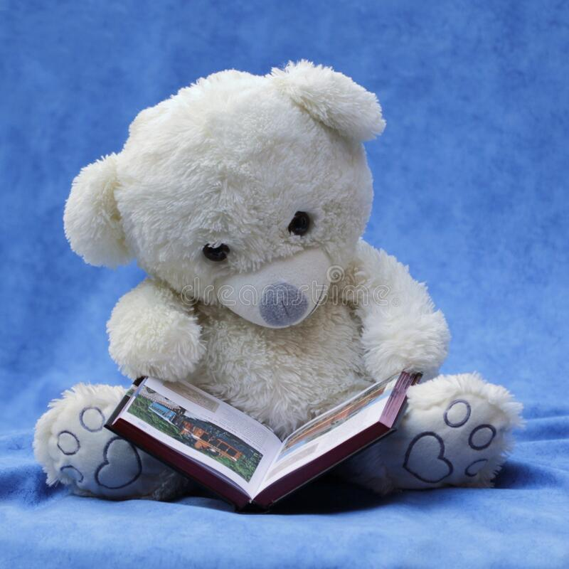 White Teddy Bear With Opened Book Photo stock image