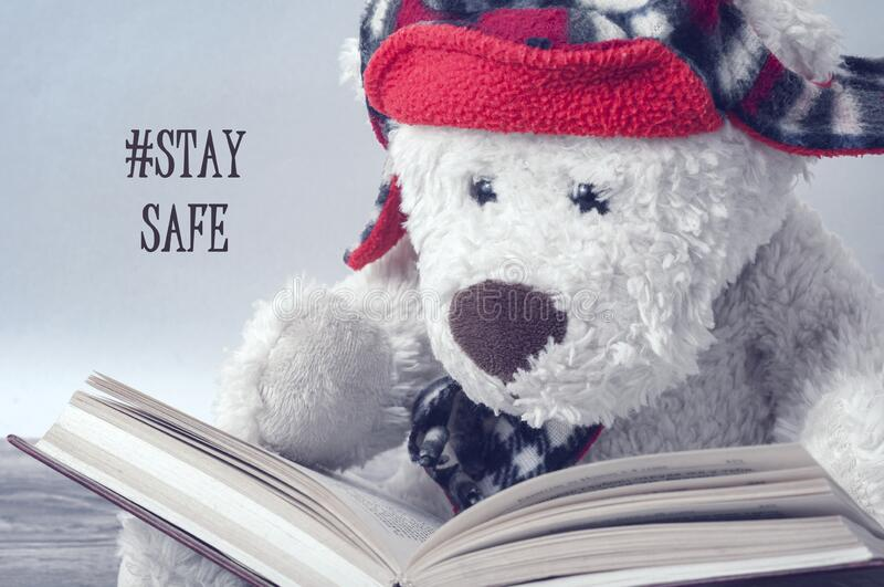 A white Teddy bear in a red hat is reading a book. The label on the left is `stay safe royalty free stock photo