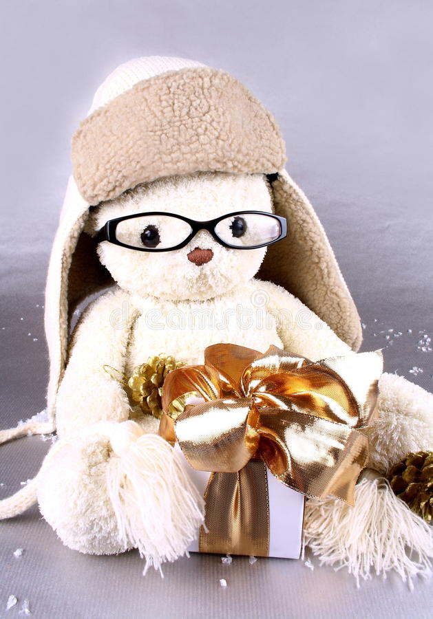 white teddy bear in winter cap glasses with gift stock. Black Bedroom Furniture Sets. Home Design Ideas