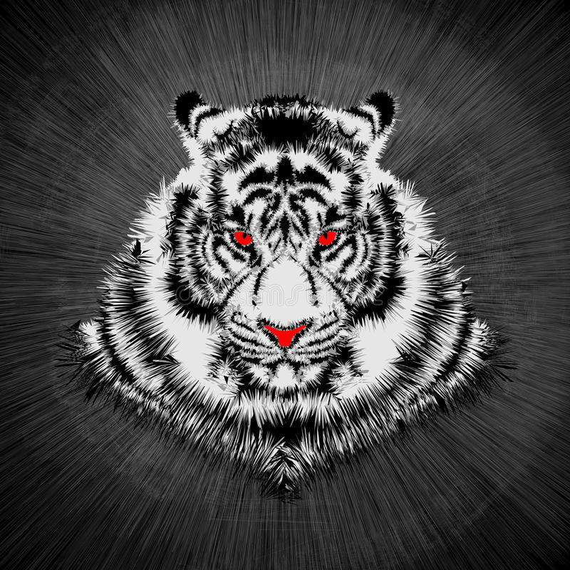 White tiger head. Vector illustration of white tiger vector illustration