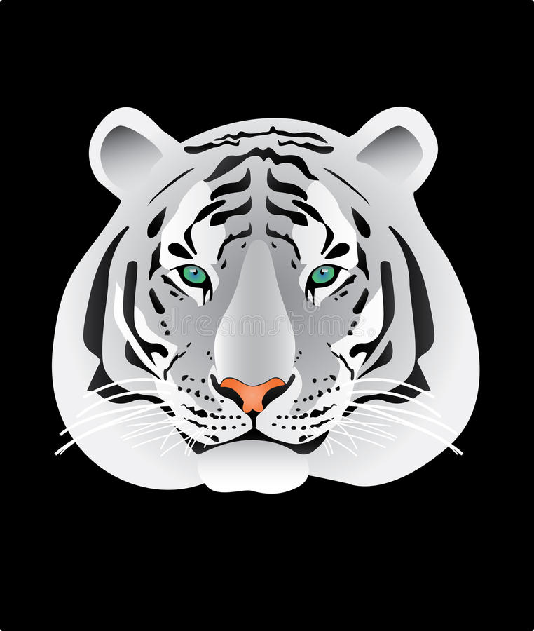 White Tiger Portrait Illustration Stock Illustration Illustration