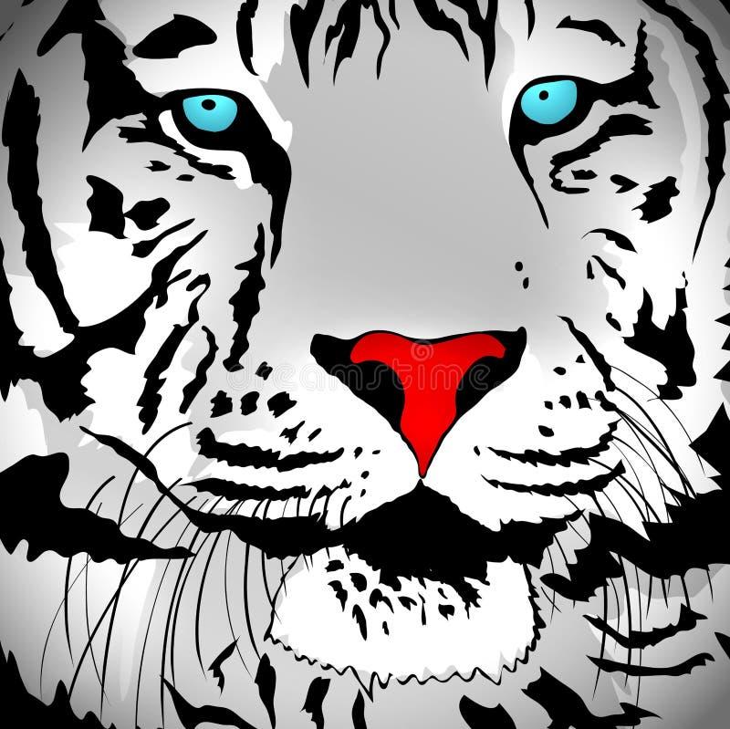 White Tiger Portrait stock illustration