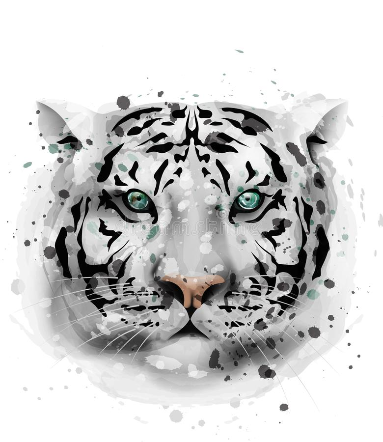 White Tiger Vector Watercolor. Wildlife Annimal Front View