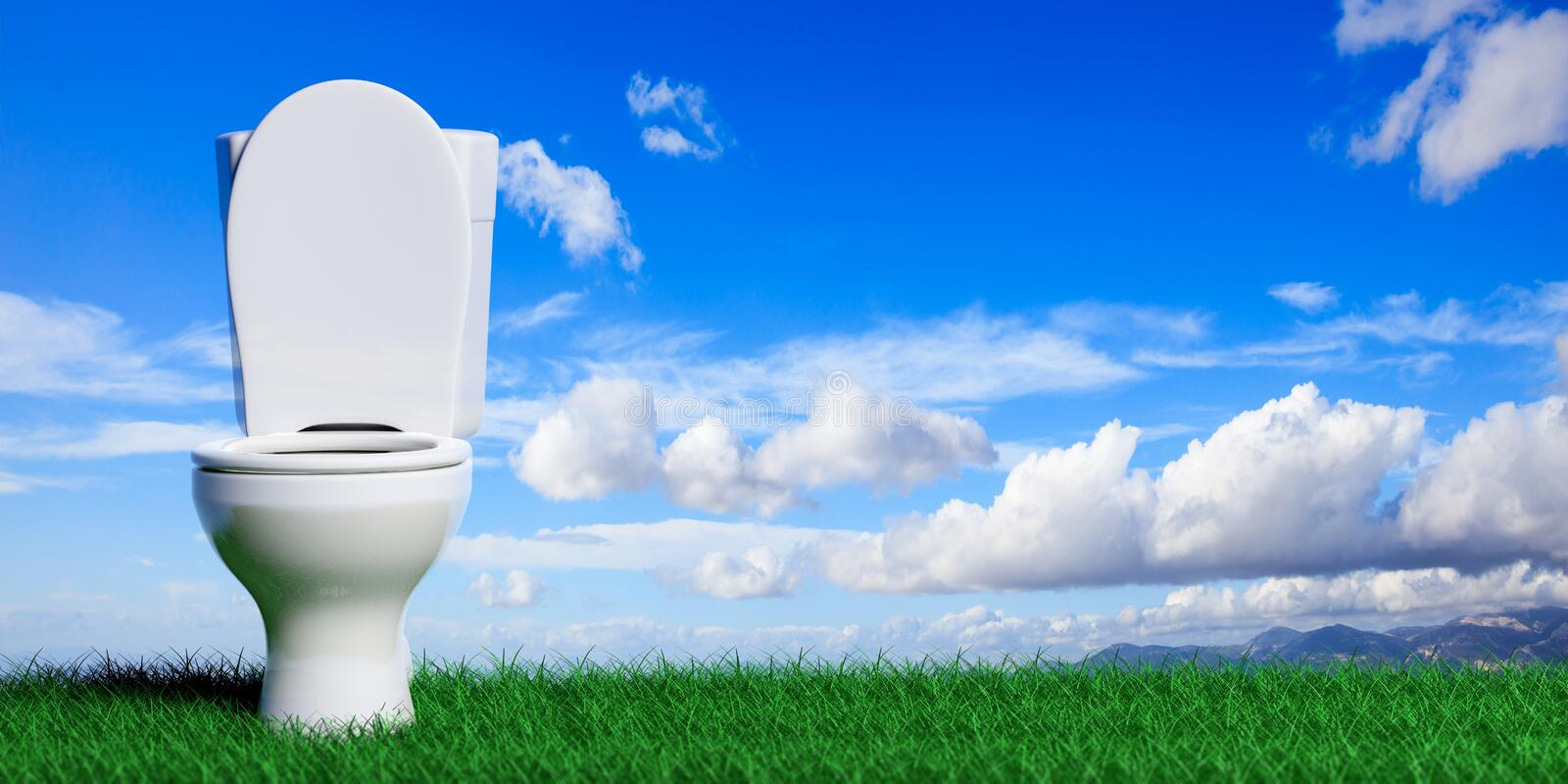 White toilet bowl on blue sky and grass background, copy space. 3d illustration. White toilet bowl on blue sky and green grass background, copy space. 3d vector illustration