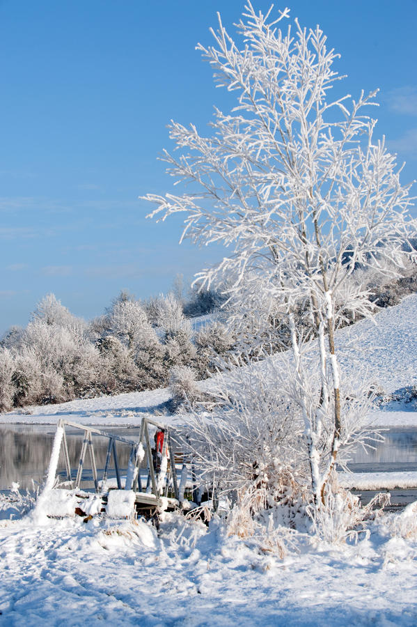 Download White tree and river stock photo. Image of frosty, area - 21888282